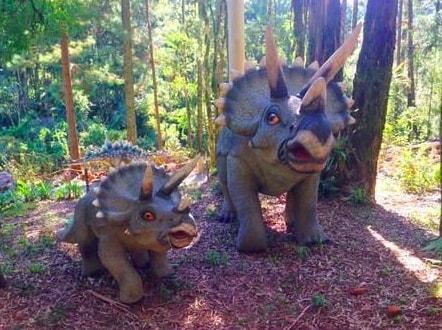 CheckOut Parque Vale dos Dinossauros
