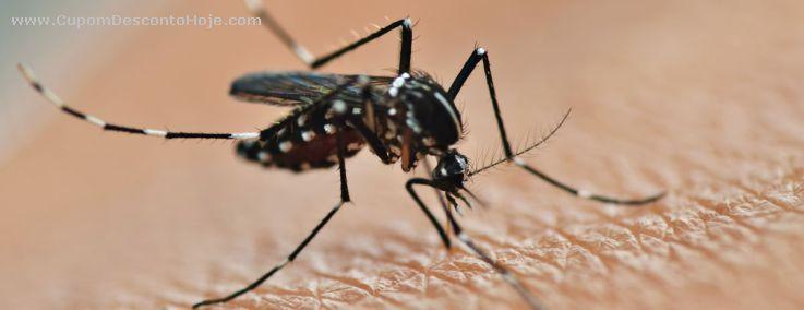 Tudo que você precisa saber sobre a vacina contra a dengue