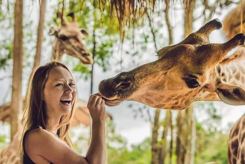 Cupom Desconto Ingresso para o Zoológico de Miami